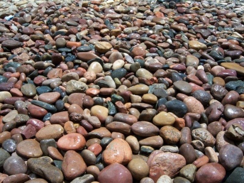 Salt River Cobble 6 Quot 18 Quot Quarry Fast Shipping Landscape
