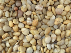"Polished Golden Yellow Pebbles 1"" - 2"""