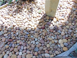 "1"" - 2"" Beach Pebbles Baja Sunburst"