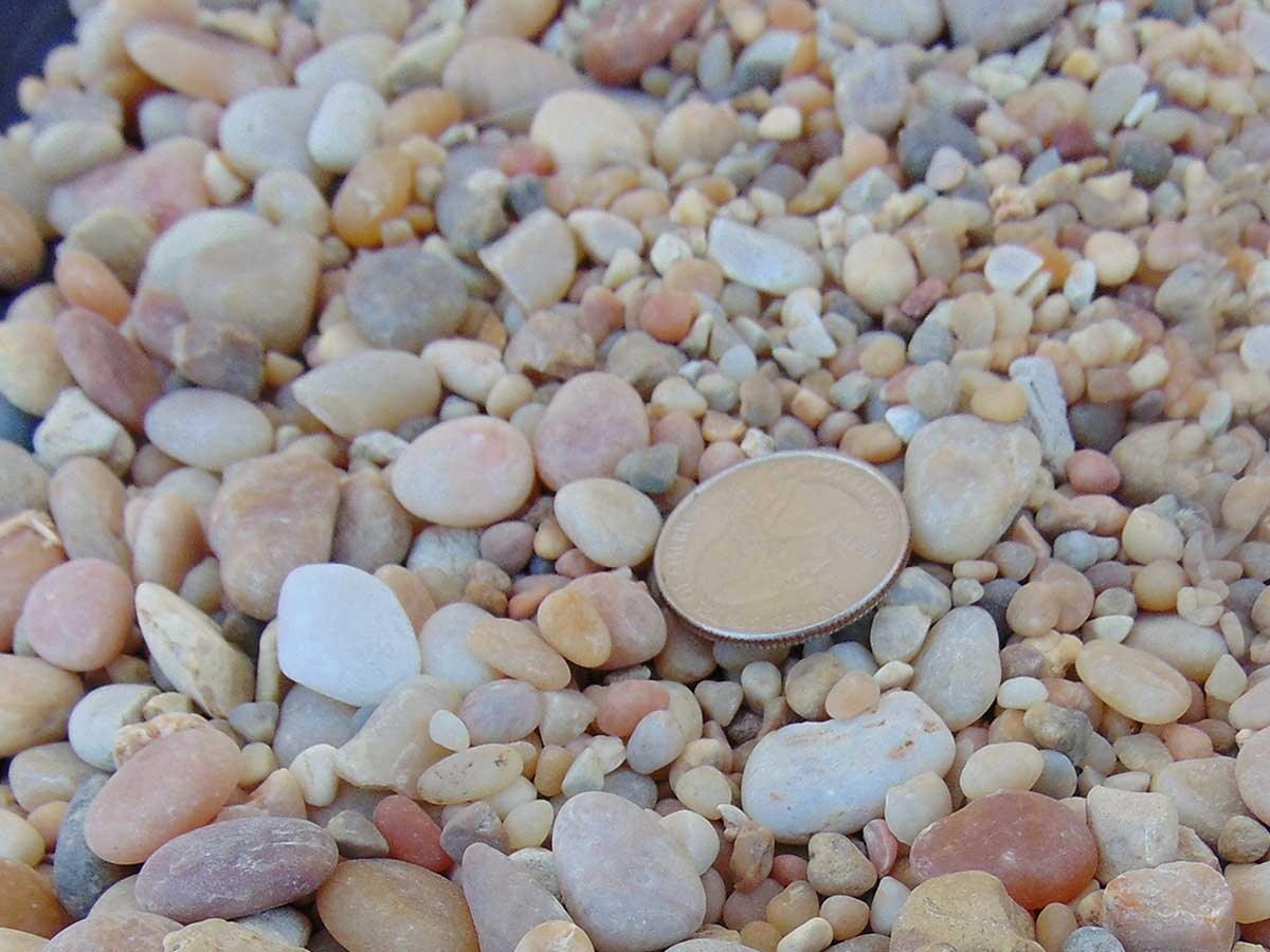 """Pebbles Garden Stones MARBLE /""""RED WINE/"""" Decorative Gravel Landscaping HOME"""
