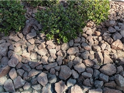 "Ruby Red Landscape Gravel 3/4""  Screened Per Yard - Gravel For Sale"