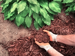 Brown Colored Landscape Mulch Per Yard