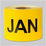3 x 2 inch - Months of the year: January Stickers