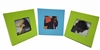 Nexxt Cool Picture Frames- Set of 3