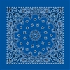 Royal Paisley Bandana