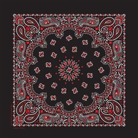 BLACK W/RED PAISLEY BANDANA