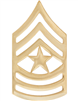No-Shine Rank Sergeant Major (E-9)-Set of 2