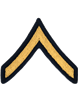 Army Dress Chevron Gold on Blue E-2 Private (Pair)