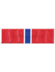 Bronze Star Ribbon