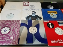"Euro House (1990's) - Lot of 30 12"" Singles"