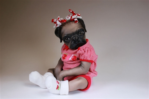 Pug baby doll   Reborn Babies   bountiful baby