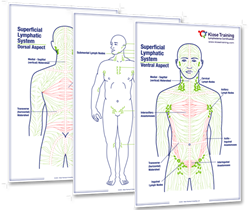 "<span style=""font-weight: bold;""><span style=""text-decoration: underline; color: rgb(0, 89, 156);"">Lymphatic System Posters (set of three)</span></span>"