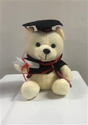 Graduation Teddy Bear