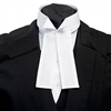 Winged Collar Shirt Cover