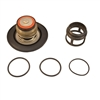 "CONBR - 2 1/2-6"" RP4A/RPDA4A VT COMPLETE RV KIT (W/O HOUSING"