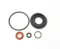 "Relief Valve Rubber Parts Kit for AMES & COLT 1"" Device - 400B"