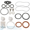 "Febco Backflow Prevention Rubber Kit - 10"" 870/870V, 876/876V"
