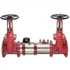 "Ames C300 OSY 8"" - Backflow Prevention Repair Parts"