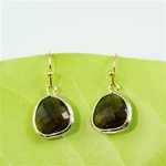 Gold Framed Brown Stone Earrings