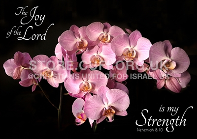 Floral Collection - Joy of the Lord