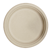"World Centric Compostable 10"" Fiber Plates 800/Case"