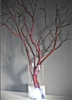 Lighted Manzanita Centerpiece Kit (shipping included!)
