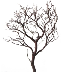 Natural Red Manzanita Branches, 18 in. tall, case of two pieces (shipping included!)