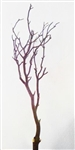 "Manzanita Filler Pieces, 18""-24"" (case of 15, shipping included)"