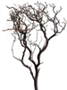 "Natural Red Manzanita Branches, 24"" tall, case of six pieces(shipping included!)"