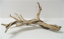 "Sandblasted Ghostwood (California Driftwood), 10-12"", case of two (shipping included!)"