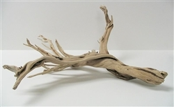 "Sandblasted Ghostwood (California Driftwood), 10-12"", case of four (shipping included!)"