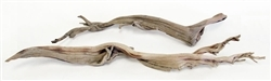 "Sandblasted Ghostwood, 10"" (California Driftwood) Stick, case of two (shipping included!)"