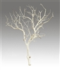 "Sandblasted Manzanita, 24"" tall, case of four (shipping included!)"