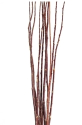 Salt Cedar, 4 ft, case of two bunches (shipping included!)