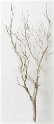 Sandblasted Manzanita Filler Piece, 36""
