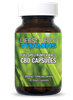 CBD Capsules  - 10mg - 50 Servings - Non-GMO - 500mg Full Spectrum Extract - 100 Veg Capsules