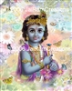 8-046 Baby Krishna  - 8 x 10 Ready to Frame Photograph