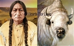CS-24 Chief Sitting Bull / White Buffalo