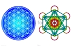 CS-42 Flower of Life (Blue) / Metatron's Cube