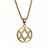 G-SDP Gold plated Star of David Pendant with Chain
