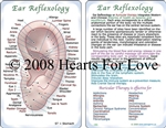 WA-186 Ear Reflexology Guide - Wallet Altar