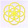 18k Gold Plated Seed of Life Healing Grid