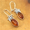 Amber Oval Sterling Silver Drop Earrings