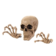Grinning Skull Skeleton Wall Decor Set