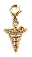 Medical Symbol Charm Dangle in Gold