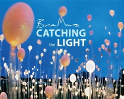 Book:  Catching the Light/Bruce Munro