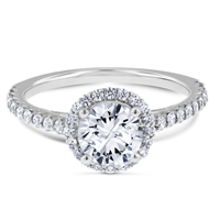 A Journey Begins Floating Halo Diamond Engagement Ring F-G VS1-VS2