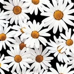 Benartex Bloom with a View Daisy Dream Black 8231-12 Half yard