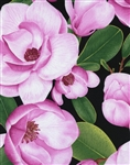 Timeless Treasures Flora Large Flowers FLORA-C1071-Pink Half Yard