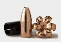 Barnes Spit-Fire MZ 285 grains Muzzleloader Bullets for .50 caliber 15 pack